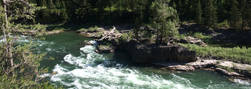 An area of rapids on the Snake River in Wyoming