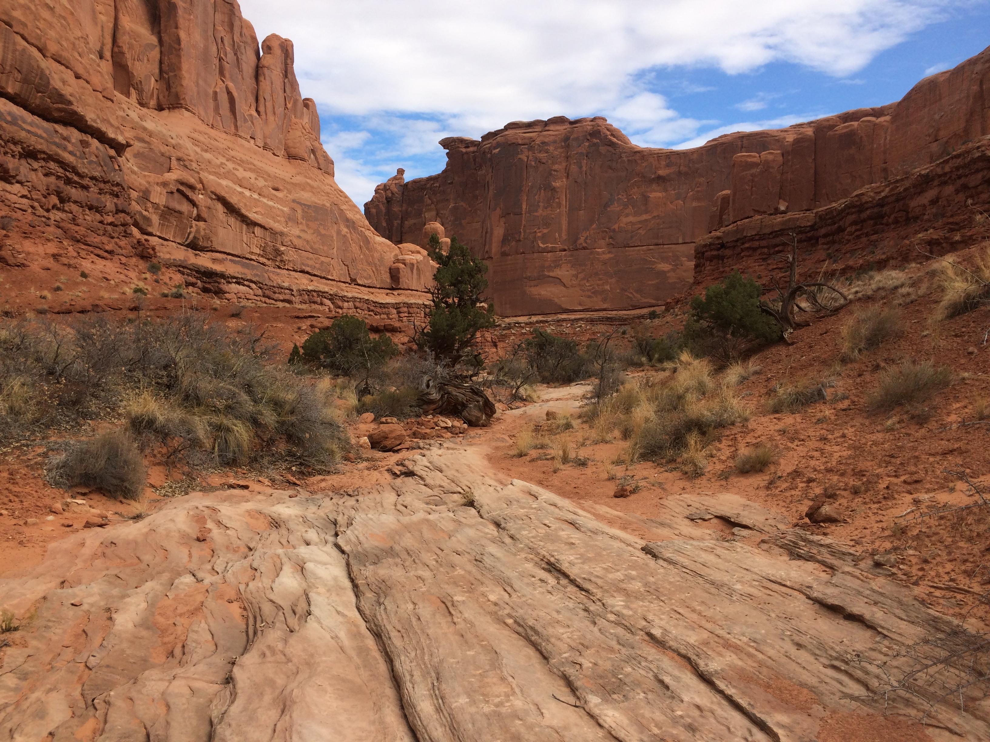 desert_arches-hike