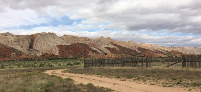 A dirt road in the foreground and a red and white Waterpocket fold in the background