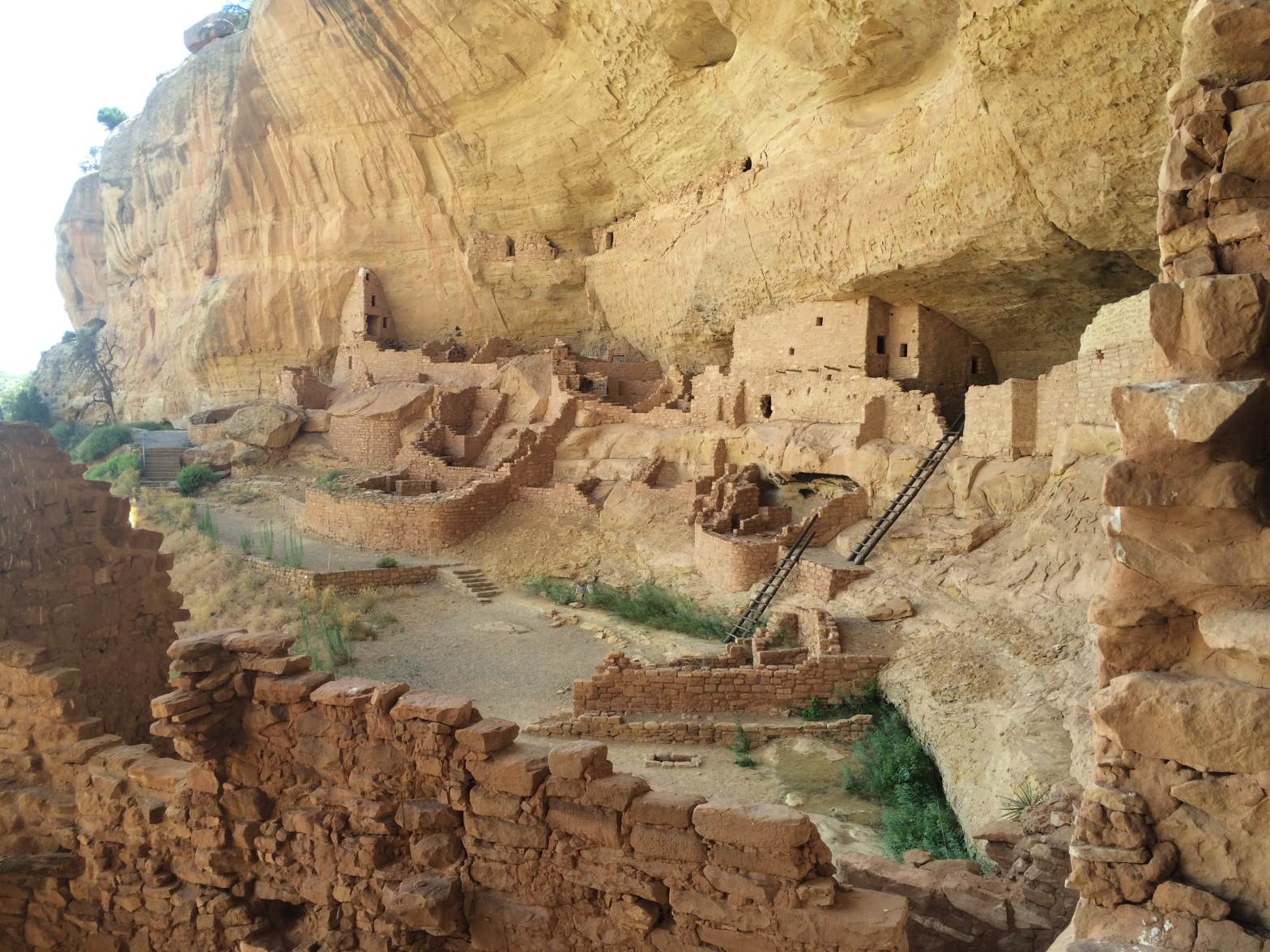 Ruins of Native American cliff dwelling under a rock alcove in Mesa Verde National Park